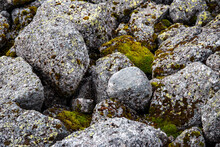 Stone Nature Background. Stones, Boulders Covered With Moss And Fungus In The Mountains Of Khibiny. Top View And Maro