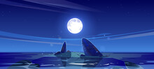 Night Seascape View, Ocean Or Sea Nature Landscape With Shallow Or Land With Rocks In Dark Water Under Starry Sky With Full Moon. Marine Nighttime Tranquil Background, Cartoon Vector Illustration