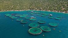 Aerial Drone Photo Of Latest Technology Auto Feeding Fish Farming  - Breeding Unit Of Sea Bass And Sea Bream In Huge Round Cages Located In Calm Mediterranean Sea