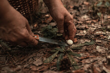 Mushroom Picker Man Is Cutting A Mushroom With A Knife In Green Moss. Seasonal Picking Of Edible Mushrooms In The Forest
