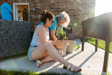 People Sitting On The Concrete Planting Vegetables.