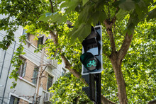 Green Light For Bicycle