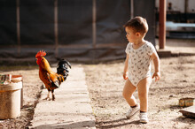 Toddler Walking With Cock.