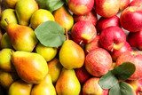 Fototapeta Kawa jest smaczna - Ripe pears and apples as background