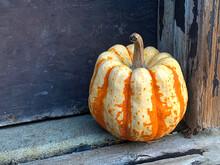Fall Harvest Striped Mini Pumpkin Displayed At The Barn Door