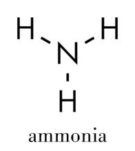 Ammonia (NH3) Molecule. Skeletal Formula.