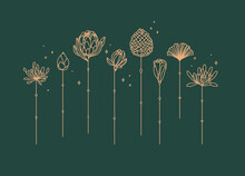 Flowers Long Stem Drawing In Art Deco Style On Green Background