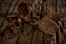 Black Cardamon Against Wooden Background