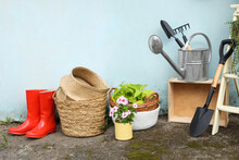 Beautiful Plants, Gardening Tools And Accessories Near Shed Outdoors