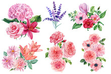 Floral Branches Of Roses, Lavender, Lilies, Hydrangea And Anemone. Watercolor Hand Drawing, Botanical Painting