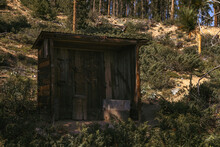 Old Mining Shed In Forest