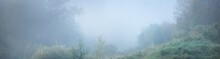 Forest Meadow At Sunrise. Pure Morning Sunlight, Sunbeams, Fog, Haze. Tree Silhouettes. Picturesque Panoramic Scenery. Atmospheric Dreamlike Landscape. Nature, Environmental Conservation, Ecology