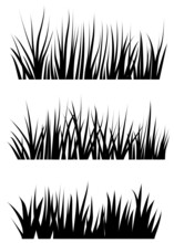 Collection Of Grass Svg Vector Illustration Silhouettes. Each Blade Of Grass Is A Separate Isolated Object
