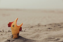 A Funny Rubber Chicken Buried In The Sand At Ocean Beach