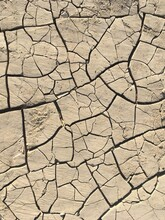 Dry Cracked Riverbed