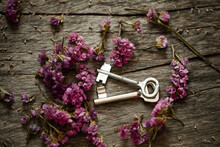 Two Old Keys. Bunch Of Flowers On Wooden Background