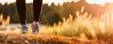 Woman With Sports Shoe And Leggings Jogging In Nature During Sunset. Panoramic Front View At Running Female Legs And Sunlight In Grass. Sport And Active Lifestyle Concept