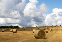 Hay Bales In The Field With Beautiful Afternoon Light