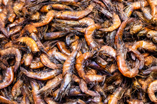 A Pile Of Delicious Dried Shrimp Fish In The Market Close Up Top View