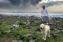 Man On Green Rocky Moss Shore With Stormy Clouds Over The Ocean Walking With His White Golden Retriever Dog