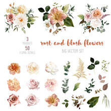 Rust Orange And Blush Pink Antique Rose, Beige And Pale Flowers, Creamy Dahlia