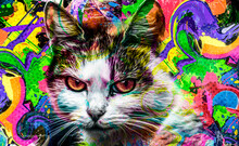Colorful Artistic Cat Muzzle With Bright Paint Splatters On Dark Background.