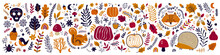 Autumn Decorative Collection With Pumpkins, Leaves, Animals And Halloween Symbols