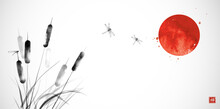 Cattail, Reed Plant, Big Red Sun And Drafonflies Hand Drawn With Ink On White Background. Traditional Oriental Ink Painting Sumi-e, U-sin, Go-hua. Translation Of Hieroglyph - Zen