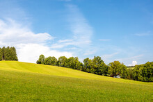 Summer Landscape With Flowering Meadow, Trees And Blue Sky
