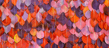 Autumn Leaves Background As Floral Pattern Or Wallpaper For Fall Season Concept And Plant Design. High Quality Details.