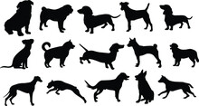 Dog Silhouette Set 05 Walking And Standing . Shepherd, Beagle, Great Dane, Dachshund, Poodle, Pit Bull. . Vector Black Flat Icon Isolated On White Background.