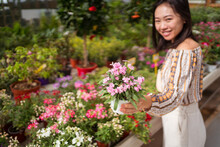 Content Asian Buyer Picking Blossoming Flowers In Garden Center