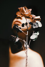 Gentle Woman With Blooming Rose In Shiny Light