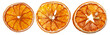 Dried orange slices on an isolated white background.