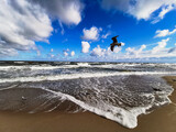 Fototapeta Fototapety z morzem do Twojej sypialni - The rough Baltic Sea and the seagull
