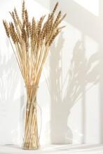 Ears Of Wheat In A Glass Jar