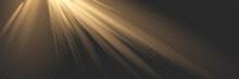 Light Effect - Spotlight. EPS 10 Vector File Included.