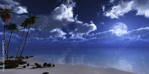 Fototapeta Beach with palm trees at night under the moon, Seashore at night under the moon,