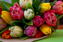 Bouquet Of Multi-colored Tulips Close-up. Spring Bright Flowers. Tulip Flower. Congratulatory Concept. Floral Mood Postcard