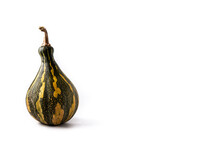 Fresh Green Pumpkin Isolated On White Background. Copy Space