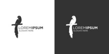 Silhouette Long Tail Bird Logo Design Template