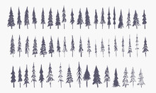 Set Of Hand Drawn Winter Trees (vector Sketched Spruce, Fir And Xmas Trees)