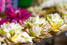 A Blossom Lotus White Flower Close Up