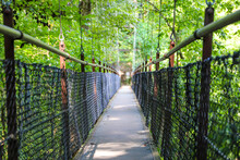 A Black And Brown Suspension Bridge Over A River Surrounded By Lush Green Trees At Lullwater Preserve In Decatur Georgia