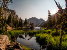 Lake Reflection Scene With Gorgeous Marsh Grass, Lush Forest, And Rocky Mountains In The Background.