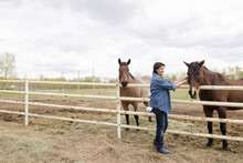 Female Farmer Petting Horse At Paddock Fence On Farm
