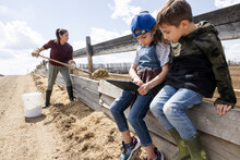 Farmer Family Working And Using Digital Tablet At Corral Fence On Farm