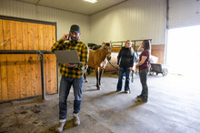 Veterinarians With Laptop And Horse Talking In Equine Rehab Barn