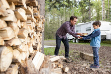 Father And Son Fetching Firewood From Log Pile