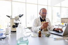 Senior Male Scientist Working At Laptop In Laboratory